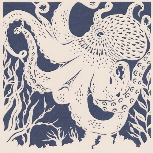 Small Common Octopus