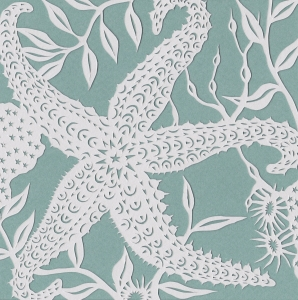 Spiny Starfish, 2016. Handmade papercut.