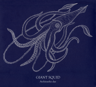 Giant Squid blue